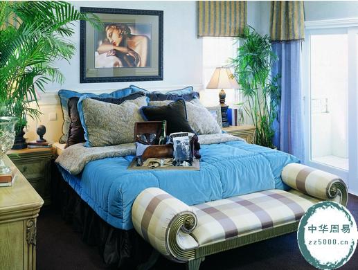卧室里植物的摆放风水