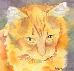 狮子座的面相与气质