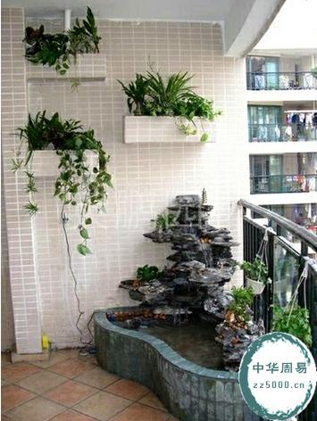 阳台里常见的招财风水植物