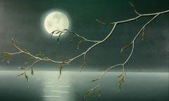 月亮双子:古灵精怪的最佳观众
