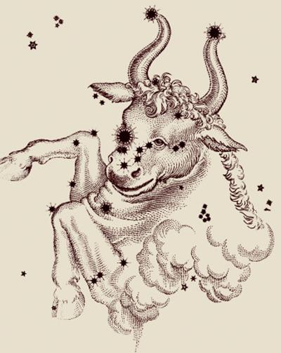生肖马的金牛座和什么生肖星座最配