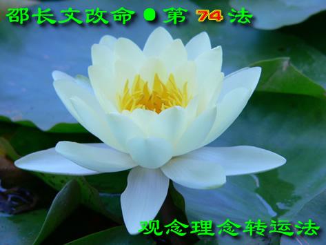 ▌邵长文调命第74法【观念理念转运法】